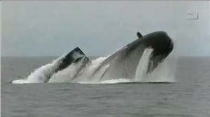 class_walrus2_splash_emergenvy_surfacing